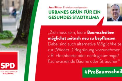 Urbanes Grün für ein gesundes Stadtklima - Pro Baumscheibe!
