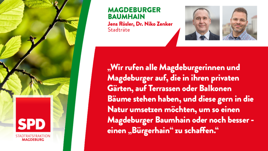 Magdeburger Baumhain
